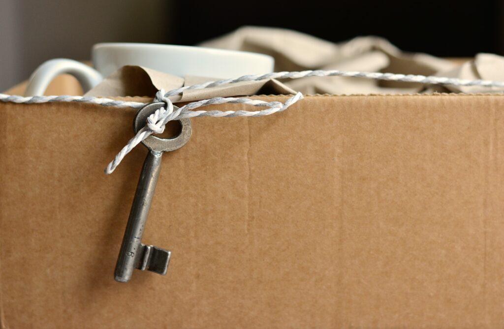 Pourquoi faire appel à un déménageur professionnel Genève ?